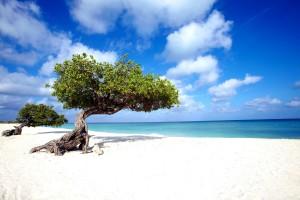 Vacanza a Anguilla tra spiagge e vip
