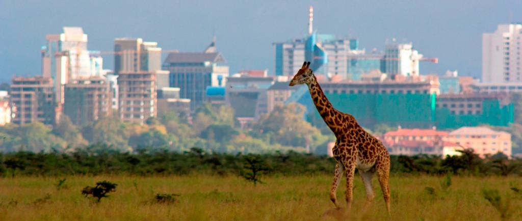 Cosa fare e vedere in kenya la mia africa tra spiagge e for Casa coloniale meridionale