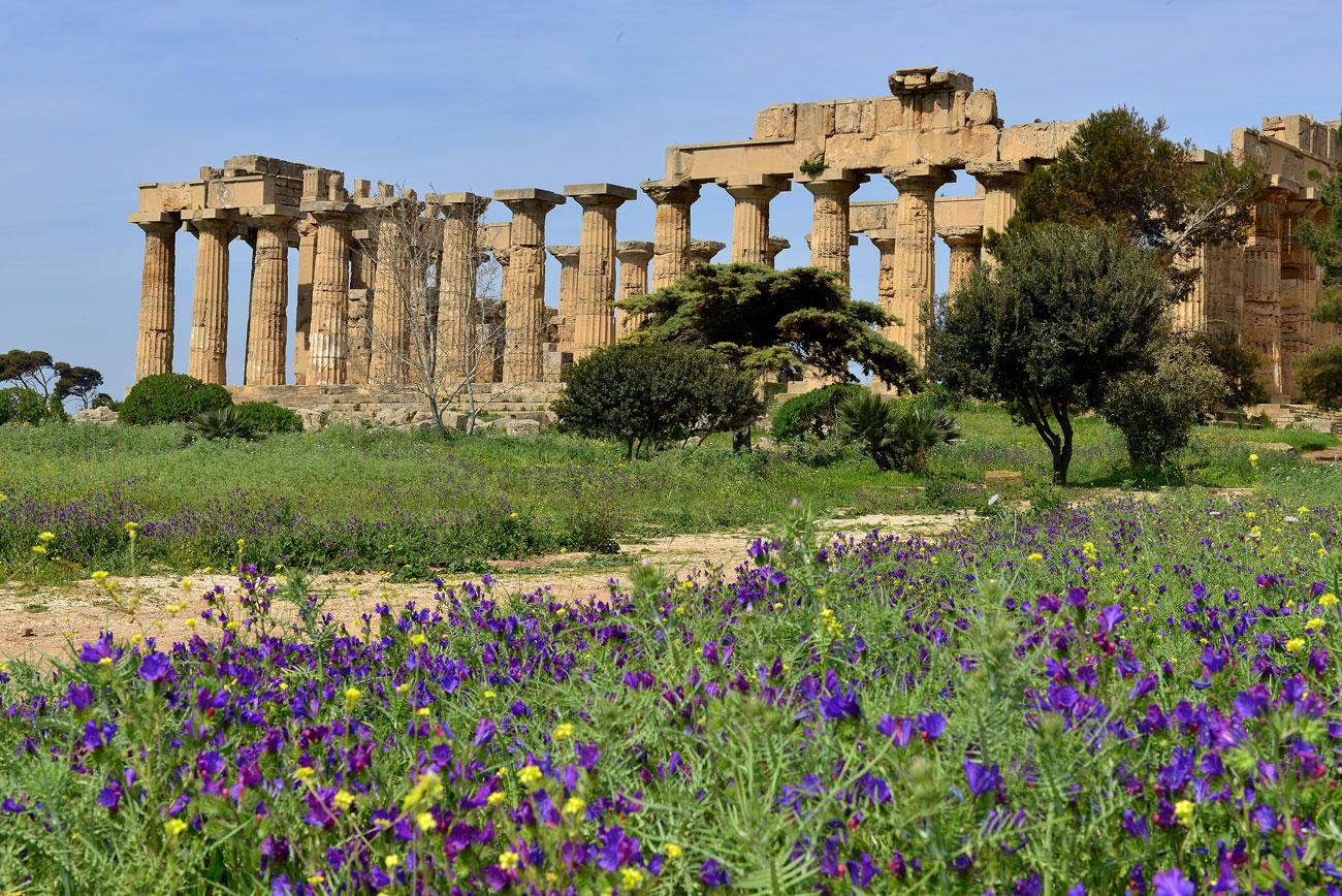 Cosa vedere a segesta e selinunte i templi di sicilia for Programma per vedere telecamere da remoto