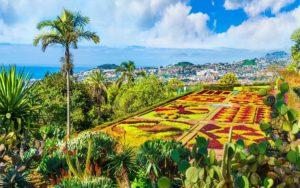 Guida di Funchal