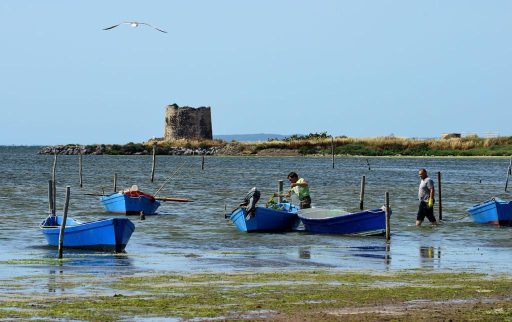 Sardegna dalla costa Verde ad Arbus, da Marceddì ad Arborea