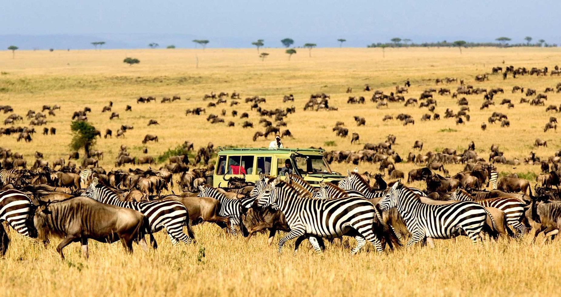 Viaggio in Tanzania