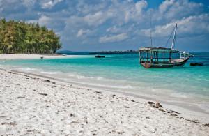 guida-di--Zanzibar---