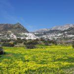 isole greche a primavera