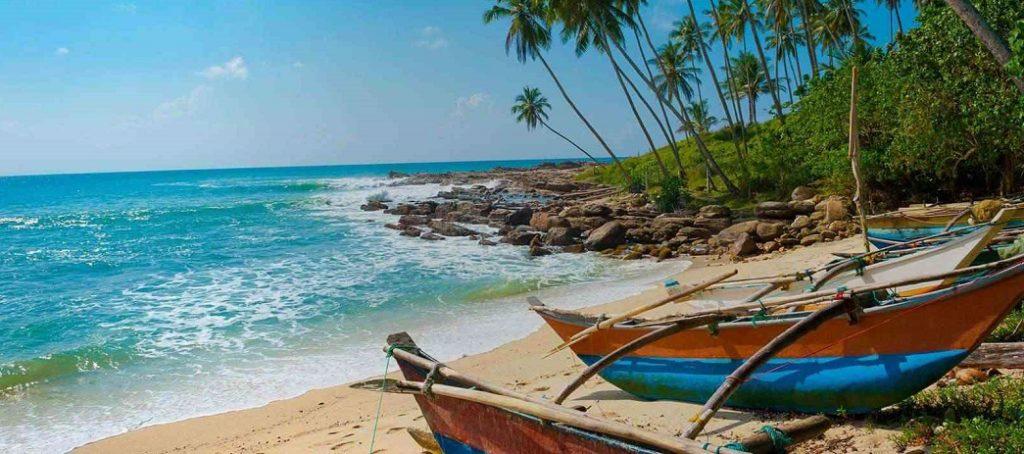 vedere nello Sri Lanka