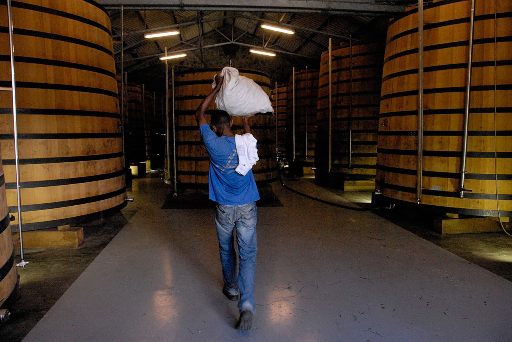 viaggio-in-Martinica---distilleria-La-Mauny